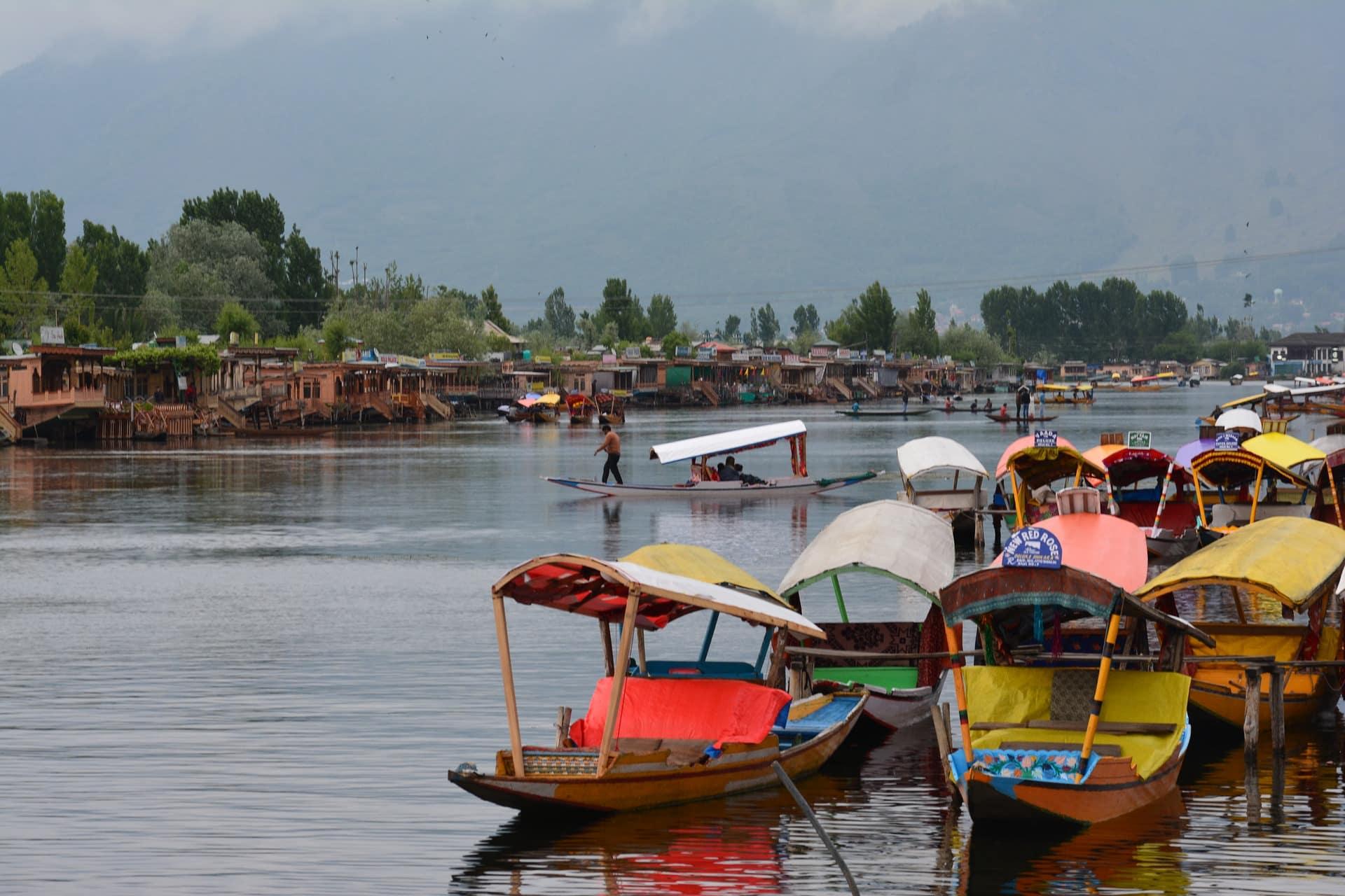 a picture of boats at Dal lake srinagar